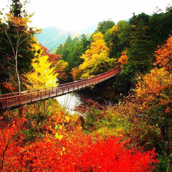 今年は記憶に残る紅葉を。関東のいつもと違った見方ができる紅葉の15の場所と方法