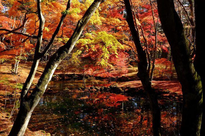 美しき大人のリゾート地。「秋の軽井沢旅行」で行きたい10のスポット