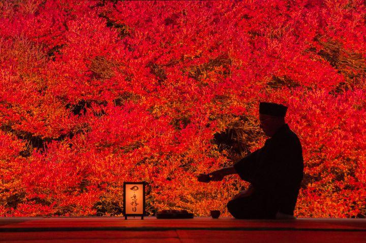 一面の紅色はまるで日本画のよう。この秋絶対に行きたい「安国寺」の魅力をご紹介