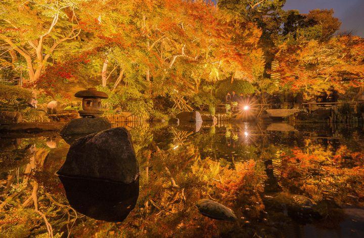 """秋の鎌倉を私はこう楽しむ。紅葉×グルメ×温泉で""""鎌倉""""1dayプラン"""