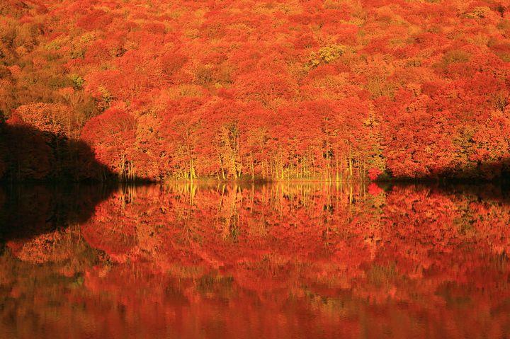 【2018年版】紅葉をいち早く満喫しよう。東北の紅葉絶景スポット10選