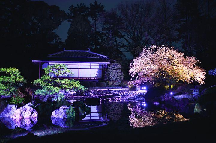 大政奉還150周年を彩る!京都府にて「二条城ライトアップ」開催