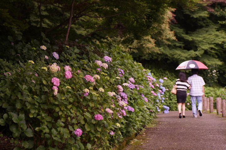 【栃木県】 雨の日だって楽しめる厳選デートスポット7選