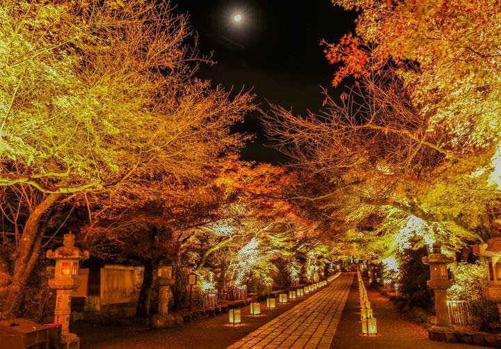 """【2017】忘れられない秋にしよう。関西の""""紅葉ライトアップ""""イベント8選"""