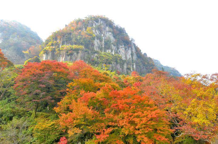 日本三大紅葉のひとつ。耶馬渓(やばけい)周辺のおすすめ観光スポット7選