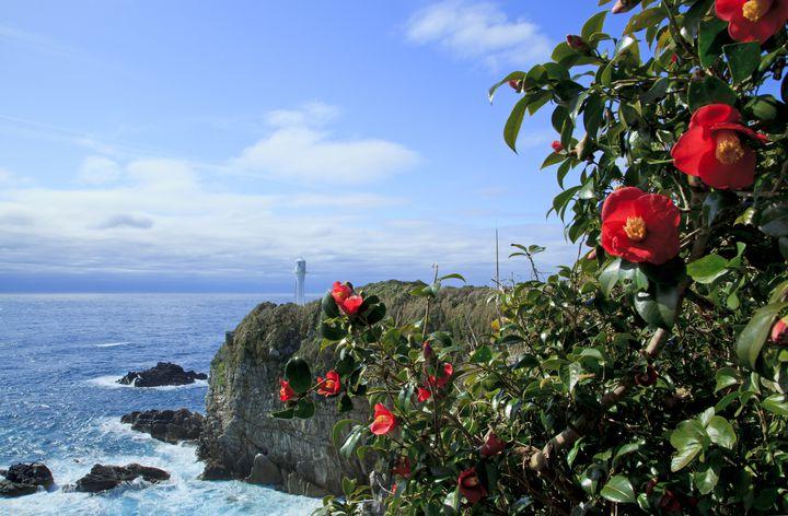 これからの季節が狙い目!冬だからこそ行くべき国内離島リゾート7選