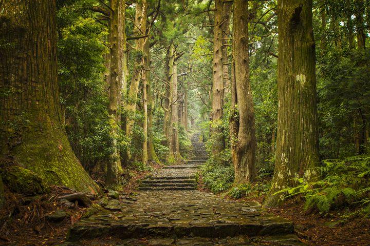 【難易度別】一人でふらっと気分転換。関西の日帰りおすすめ一人旅スポット10選