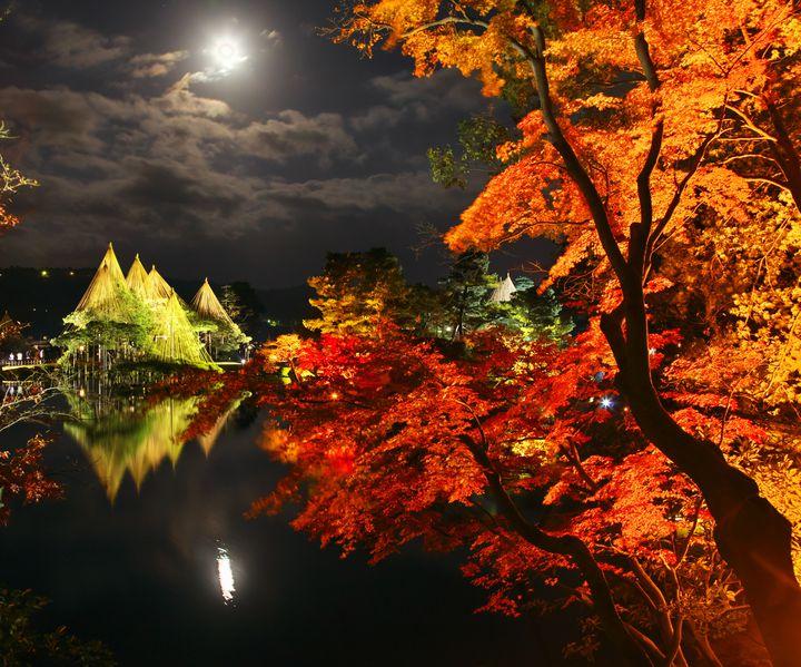 """ナイトイベントで幻想的な夜を。関東の""""今週したいこと""""7選"""