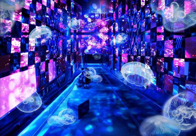 """大切な人と二人で行きたい。東京近郊の""""夜のイベント""""まとめ【2017年秋】"""