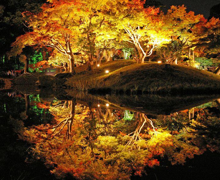"""深まる秋に紅葉狩りへ。関西地方の""""今週したいこと""""7選"""