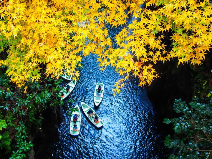 絶景ドライブがしたい!九州の紅葉ドライブスポットまとめ【2018年秋】