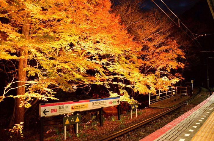 """いつもと違う紅葉狩り。車窓から紅葉を見ることができる""""絶景鉄道""""7選"""