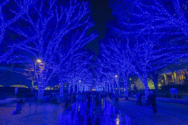 【2018.11/26~12/2】冬本番!東京の「今週したいこと」9選