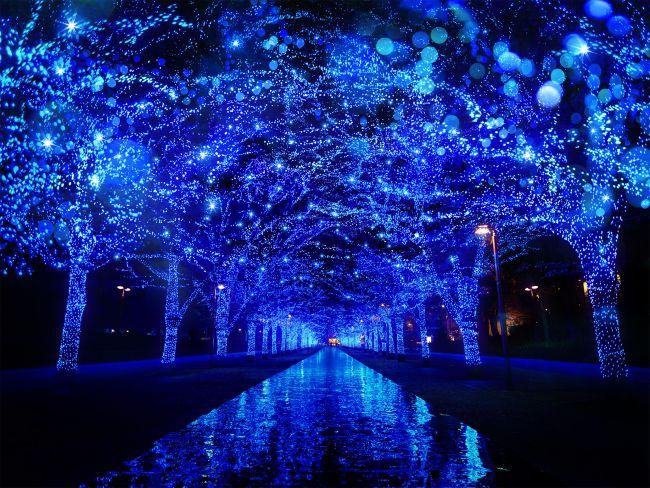 【開催中】大人気イルミが今年も帰ってくる!『青の洞窟 SHIBUYA』開催