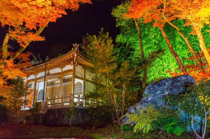 12月の京都を彩る絶景ライトアップ!「京都 嵐山花灯路2019」開催