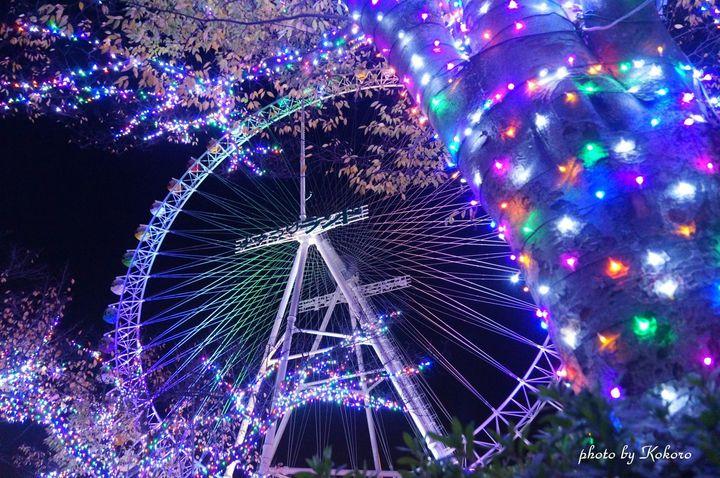 いち早く冬の宝石を。11月上旬から楽しめる東京近郊のイルミネーション10選