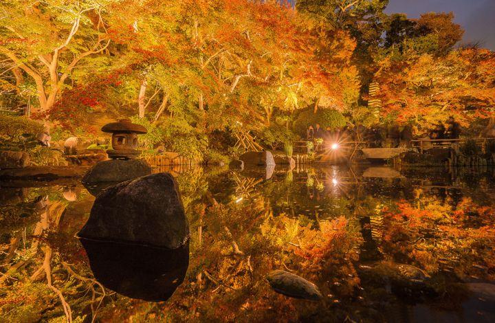 """違う顔を楽しむ秋旅を。""""昼夜で楽しみ方の違う""""2018秋注目の三大エリア"""
