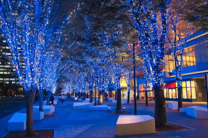 【終了】今年はエリアを拡大!みなとみらいのイルミネーションで冬の思い出を