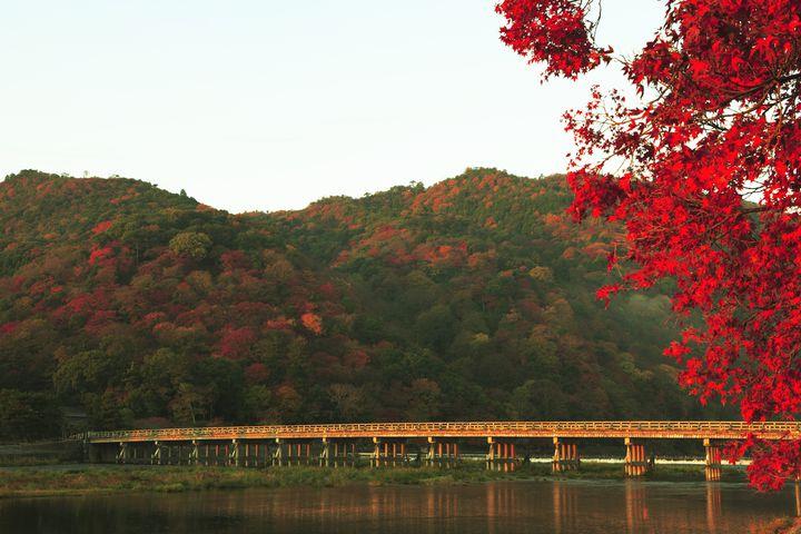 京都・嵐山の魅力を伝えたい!ここに来たら行くべき人気スポット7選