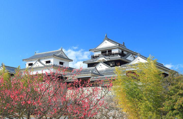 松山観光に外せない!愛媛の名所「松山城」に訪れたらしたい7つのこと