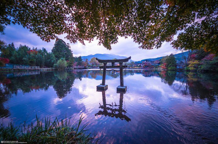 """湯気が立ち込める冬の湖へ。大分・湯布院にある""""金鱗湖""""で朝の絶景が見たい"""