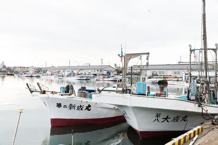 JR氷見駅から車で約5分、徒歩約20分の氷見漁港は、日本海側有数の漁港。四季を通じて約160種類もの魚が水揚げされます。代表的な魚が、春のイワシ、夏のマグロ、そして冬の寒ブリです。