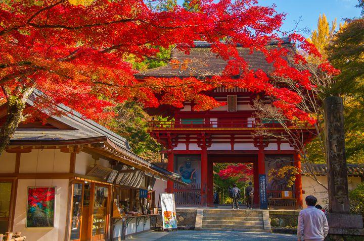 京都に負けない秋の絶景!奈良県の紅葉×古都が美しい人気紅葉スポット8選