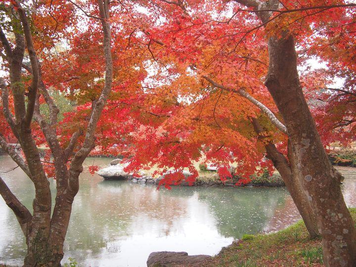 圧倒的な景観美!癒される岡山の紅葉名所ランキングTOP5