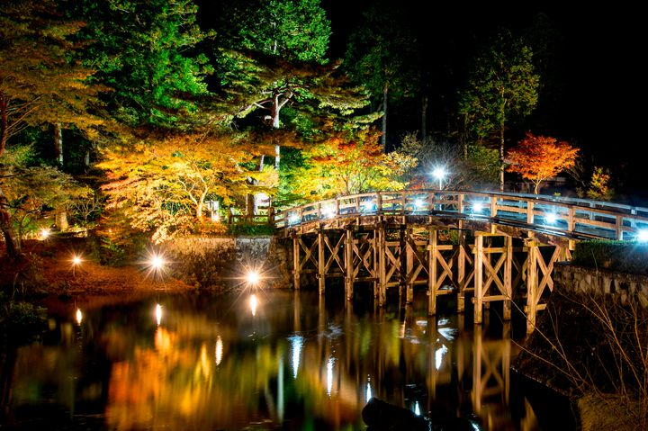 1日中楽しめる!この秋行きたい静岡の紅葉名所ランキングTOP5