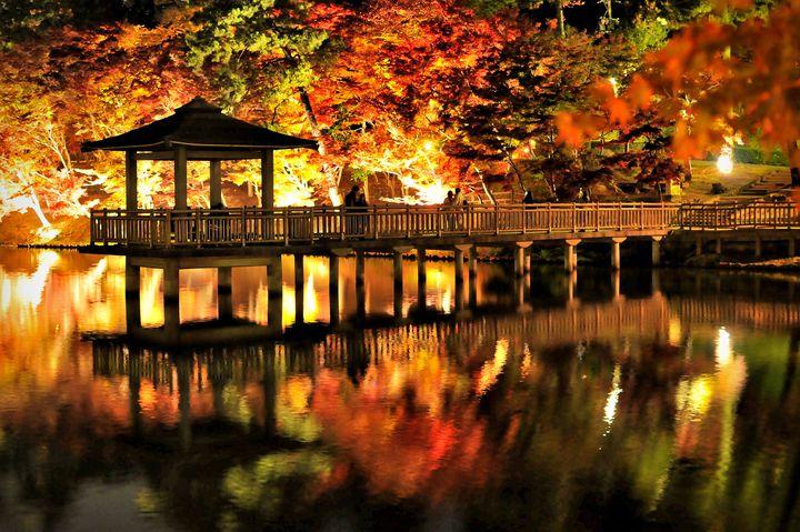 秋の景色に癒される。愛知のおすすめ紅葉名所ランキングTOP5