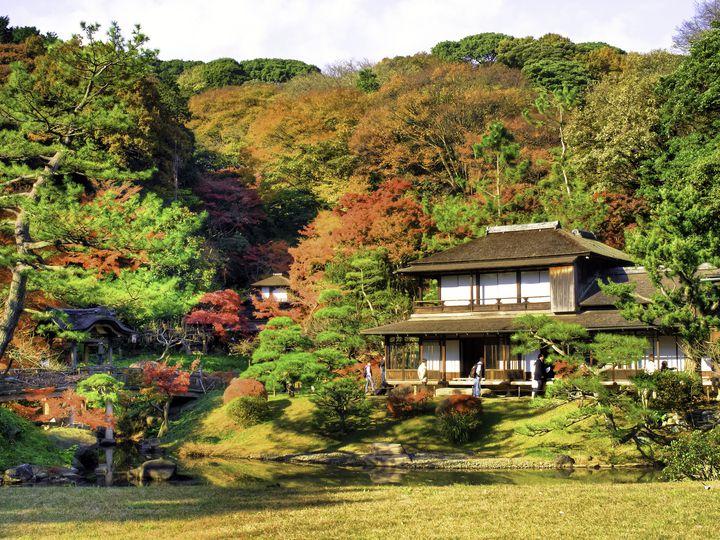 定番だけどハズせない!癒される神奈川の紅葉名所ランキングTOP5