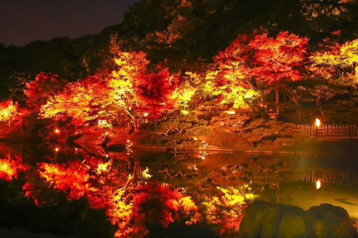 【終了】水面に映る、紅葉の絶景。「特別名勝 栗林公園」秋のライトアップ開催