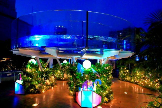 【終了】イルミやこたつが楽しめる!サンシャイン水族館「マリンガーデン」で夜の特別営業実施