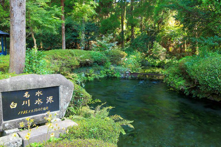神秘の池がここにある。熊本県にある「白川水源」は最高の癒しスポットだった