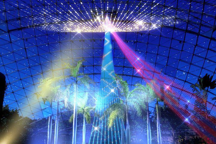 【終了】過去最大150万球!「フラワーイルミネーションinとっとり花回廊」が美しい
