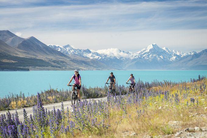 一度は行くべき!旅行好きに「ニュージーランド」がオススメな6つの理由