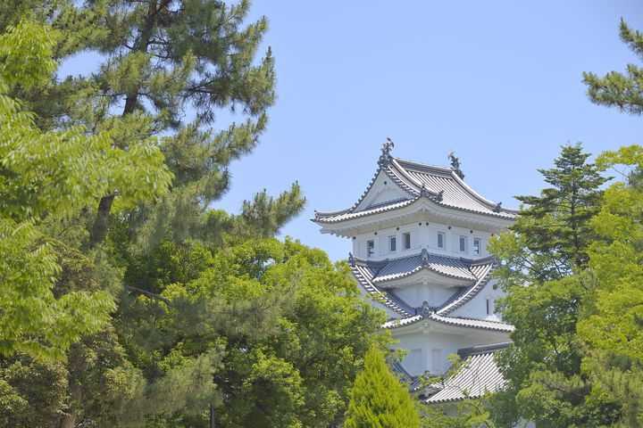 休日は公園でのんびり過ごしたい!岐阜県大垣市にある公園をご紹介