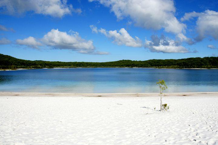 世界最大の砂でできた島。オーストラリア「フレーザー島」を徹底解剖