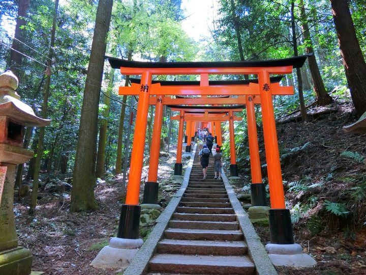いま何段目か覚えてる?日本国内の階段を登った先にある絶景スポットまとめ