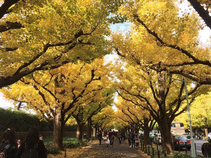 寒さも吹き飛ばす1日に。東京近郊の「11月のデート」でしたい9つのこと