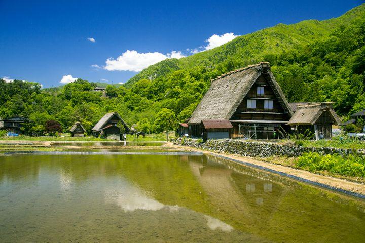 【超厳選】この夏行こうぜ、一人旅!日本国内の1人で見に行きたい絶景7選