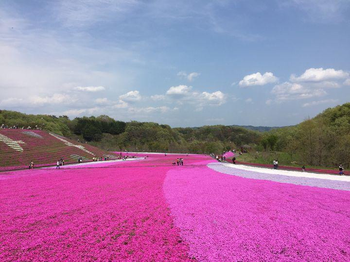 栃木県にはこんなに素敵な場所が?穴場のおすすめ観光スポット20選