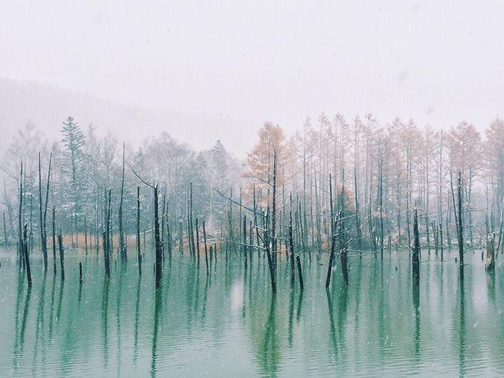 """寒いからこそ楽しい。グルメも絶景も大満喫の""""冬の北海道2泊3日プラン""""はこれだ"""
