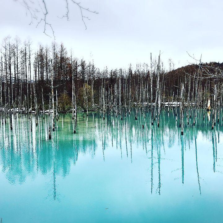 息を呑む絶景をあなたに!一生に一度は行くべき日本の本当に美しい観光地17選