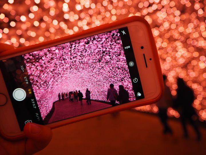 バレンタインデートは光に包まれて。日本全国のイルミネーション7選【2019】