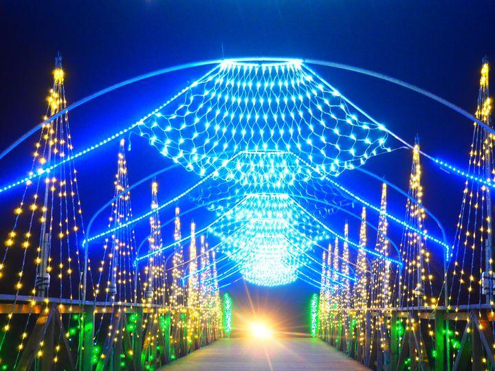 【終了】富士山をバックに。山中湖 花の都公園「イルミネーションファンタジウム」が開催