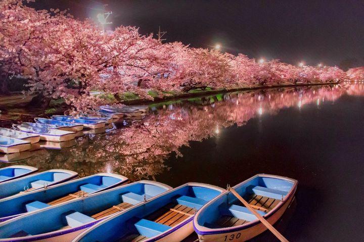 """""""春旅""""にもおすすめ!GWに行くべき東北の絶景スポット13選"""