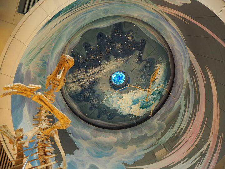 生命の謎に触れる!「神奈川県立生命の星・地球博物館」でしたい5つのこと