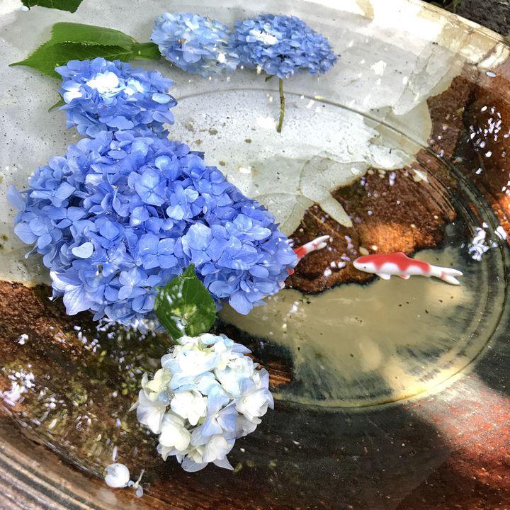 のんびり過ごす大人の休日。初夏におすすめな鎌倉日帰り旅プランはこれだ