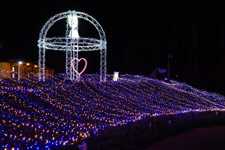 【終了】2地区で同時開催!国営アルプスあづみの公園の「アルプス一千の煌めき」